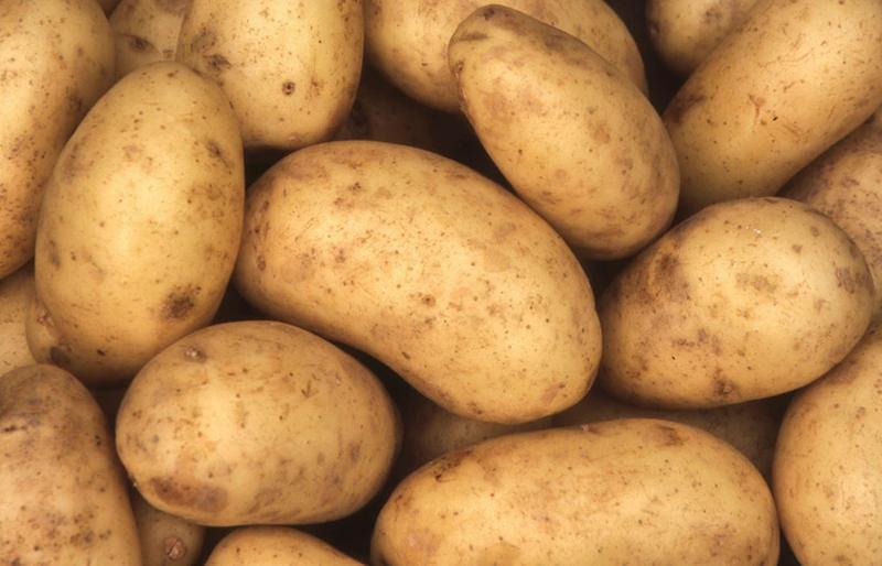 Ziemniaki – czy są tuczące? Obalamy mity!